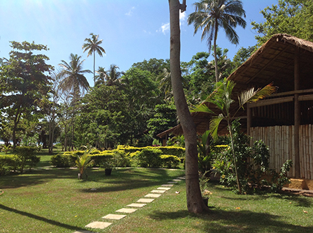 bamboo huts & grounds